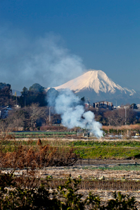 見沼田んぼの焚き火と富士山の写真素材 [FYI03994945]