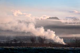 朝日を浴びる焚き火の煙漂う見沼田んぼの写真素材 [FYI03995243]