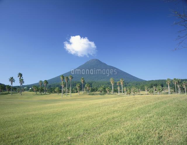 指宿ゴルフクラブと開聞岳の写真素材 [FYI03995460]