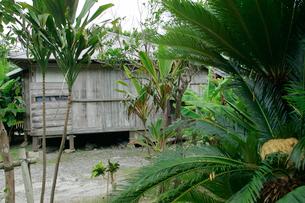 田中一村住居跡の写真素材 [FYI03995710]