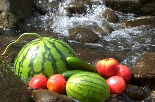 すいかと夏野菜の写真素材 [FYI03995831]