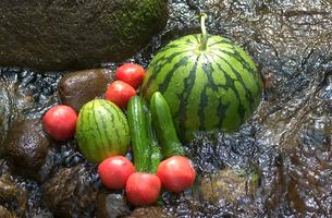 すいかと夏野菜の写真素材 [FYI03995832]