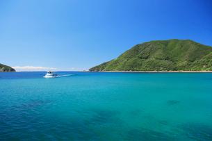 佐多岬海中公園の写真素材 [FYI03996001]