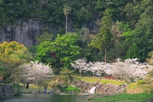 春の磨崖仏公園の写真素材 [FYI03996083]