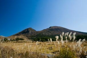 秋のえびの高原の写真素材 [FYI03996133]
