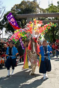 鹿児島神宮初午祭の写真素材 [FYI03996163]