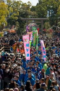鹿児島神宮初午祭の写真素材 [FYI03996165]