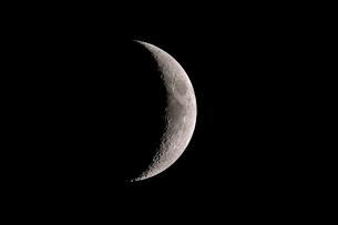 月齢4の写真素材 [FYI03996642]