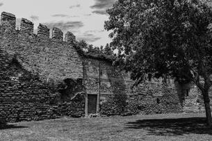 初夏のトプカプ宮殿南側城壁13の写真素材 [FYI03996890]