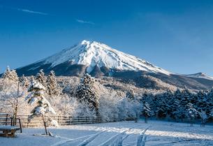 西臼塚から見た富士山の写真素材 [FYI03997072]