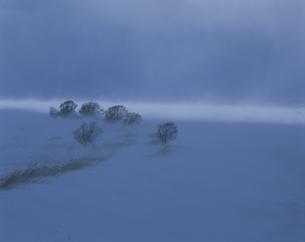 地吹雪の津軽平野の写真素材 [FYI03997645]