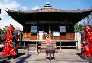 東覺寺の写真素材 [FYI03999505]