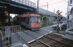 世田谷線踏切 豪徳寺駅の写真素材 [FYI03999560]