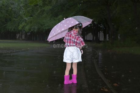 雨降りの暗い林を傘を差して歩く幼い女の子。孤独、虐待、一人ぼっちイメージの写真素材 [FYI04009092]