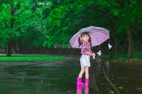 雨降りの暗い林を傘を差し笑顔で振り返る幼い女の子。の写真素材 [FYI04009116]