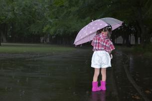 雨降りの暗い林を傘を差して歩く幼い女の子。孤独、虐待、一人ぼっちイメージの写真素材 [FYI04009120]