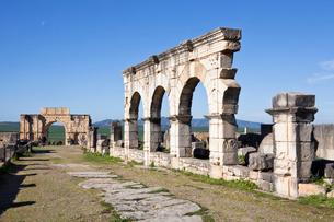 Decumanus Maximus Street and Caracalla Triumphal Archの写真素材 [FYI04009280]
