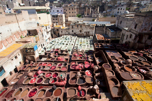 Fes Tanneryの写真素材 [FYI04009288]