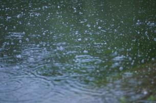 気泡の立つ水面 高浪の池の写真素材 [FYI04009354]