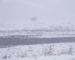 雪の矢代川の写真素材 [FYI04009372]