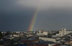雨後の高田上空に出た虹の写真素材 [FYI04009439]