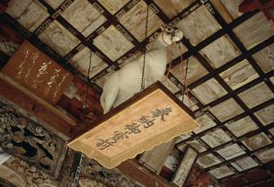 慈光寺観音堂 天井の奉納馬の写真素材 [FYI04009460]