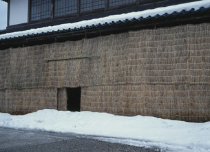 雪囲いの写真素材 [FYI04009461]