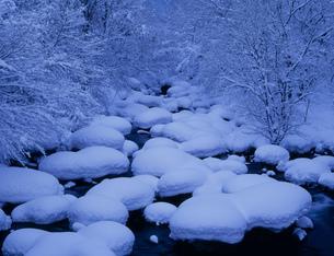 竜川の雪景色の写真素材 [FYI04009552]