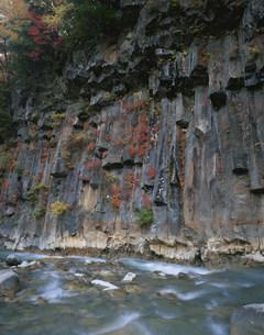 秋の松川渓流と玄武岩の写真素材 [FYI04009668]