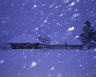 雪の夜の民家の写真素材 [FYI04009693]