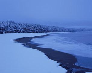 高田松原の雪景色の写真素材 [FYI04009703]