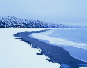 高田松原の雪景色の写真素材 [FYI04009710]