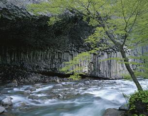 玄武洞の春葛根田渓谷の写真素材 [FYI04009733]