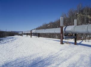 石油パイプラインフェアバンクスの写真素材 [FYI04011031]