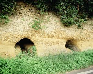 崎浜横穴古墳群の写真素材 [FYI04011081]
