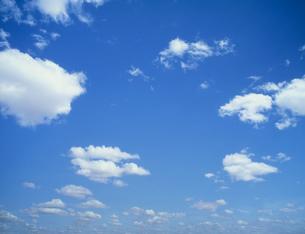 サバンナに浮く雲 アンボセリの写真素材 [FYI04011202]