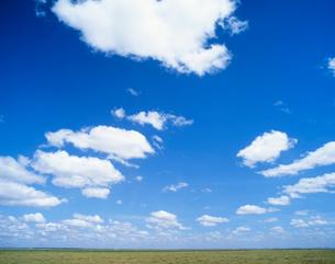 サバンナに浮く雲の写真素材 [FYI04011209]