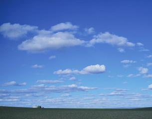 草原に浮く白い雲の写真素材 [FYI04011269]