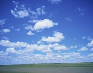 草原に浮く白い雲の写真素材 [FYI04011273]