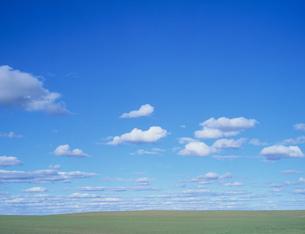 草原に浮く白い雲の写真素材 [FYI04011274]