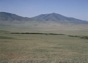 ンゴロンゴロ平原 セレンゲティ高原の写真素材 [FYI04011416]
