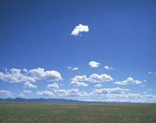 草原に浮く白い雲の写真素材 [FYI04011448]