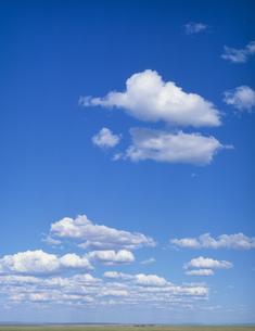 草原に浮く白い雲の写真素材 [FYI04011450]