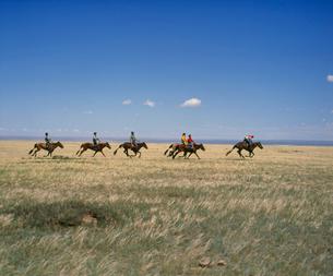ナーダムの練習 競馬の写真素材 [FYI04011471]