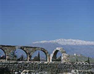 アンジャルの遺跡 レバノンの写真素材 [FYI04011563]