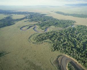 舵行するマラ川の写真素材 [FYI04011590]