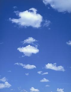 白い浮き雲の写真素材 [FYI04011600]