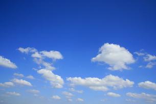 雲の写真素材 [FYI04011630]