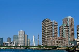 高層住宅と東京スカイツリーの写真素材 [FYI04011668]