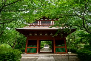 長勝寺の写真素材 [FYI04011682]